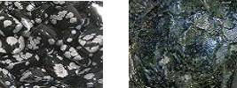 20090112202603-obsidiana-nevada-y-azabache.jpg